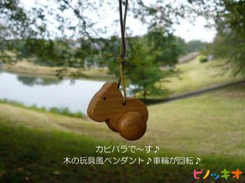 kapi_a004.jpg