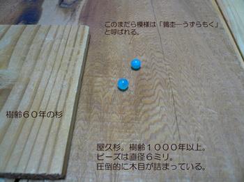 yakusugi02.jpg